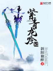 紫青龙吟记