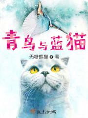青鸟与蓝猫